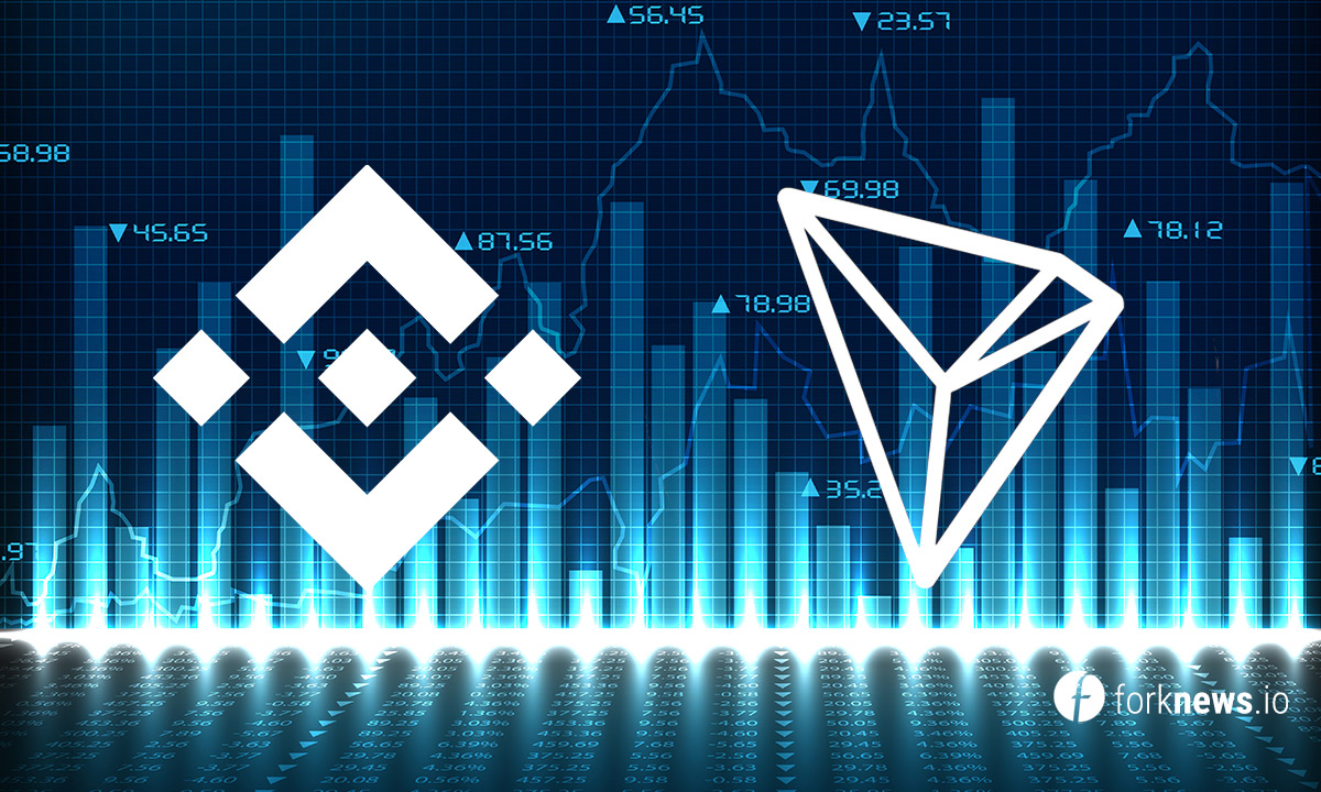Analysis of TRX / USD and BNB / USD on 01/01/2019