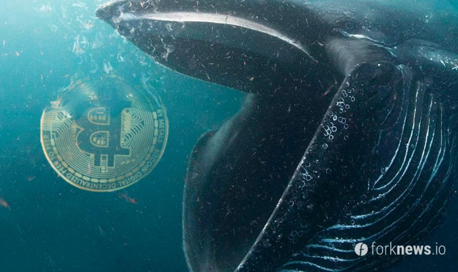 Top 10 largest Bitcoin whales